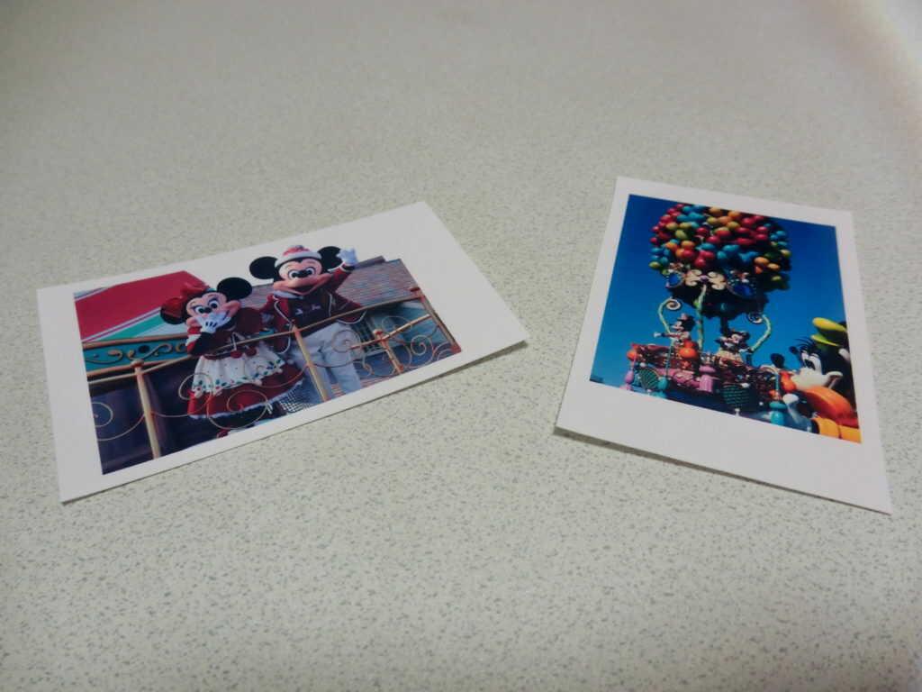 2枚に切られた写真