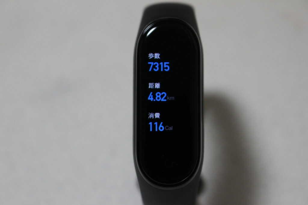 歩数、距離、消費の数値が表示されている